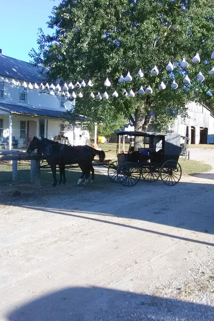 View of Amish farm house we visit.