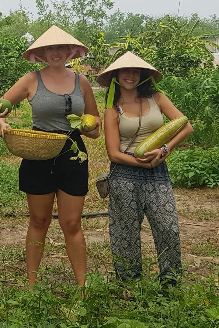 Pick up melon in the garden