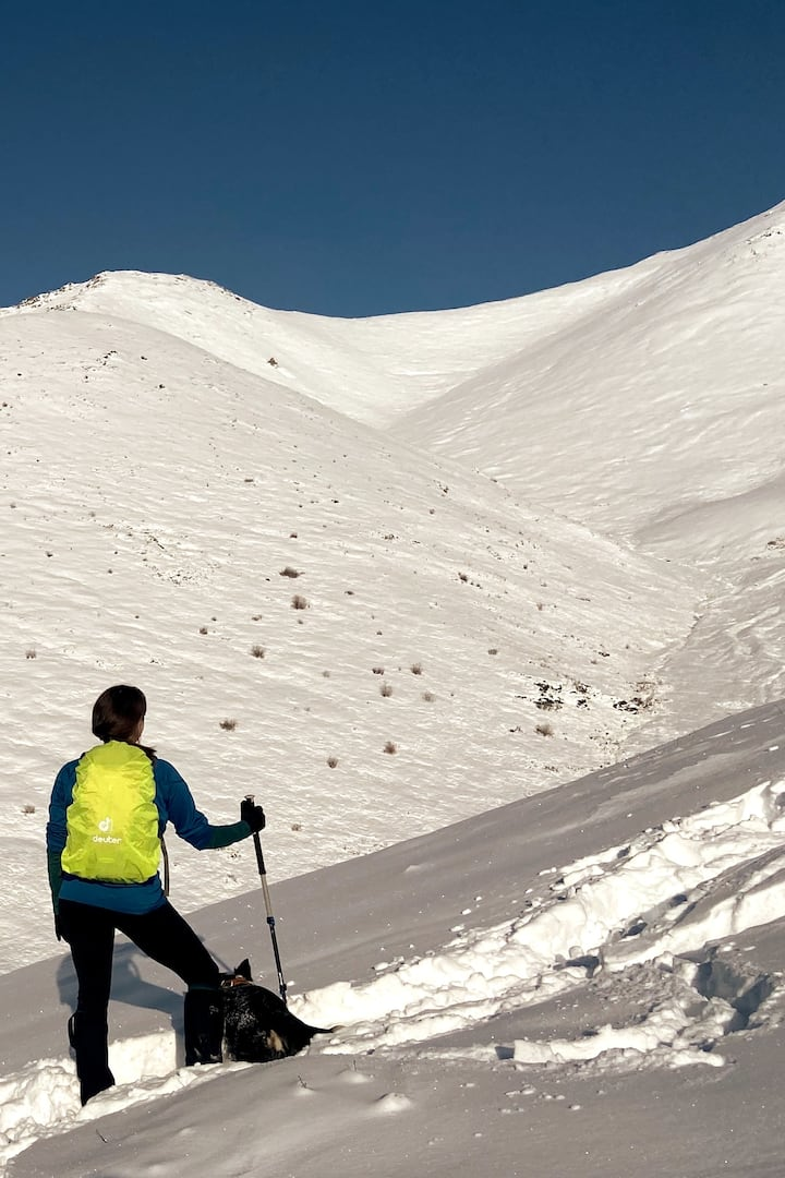 Come explore Alaska on a winter hike