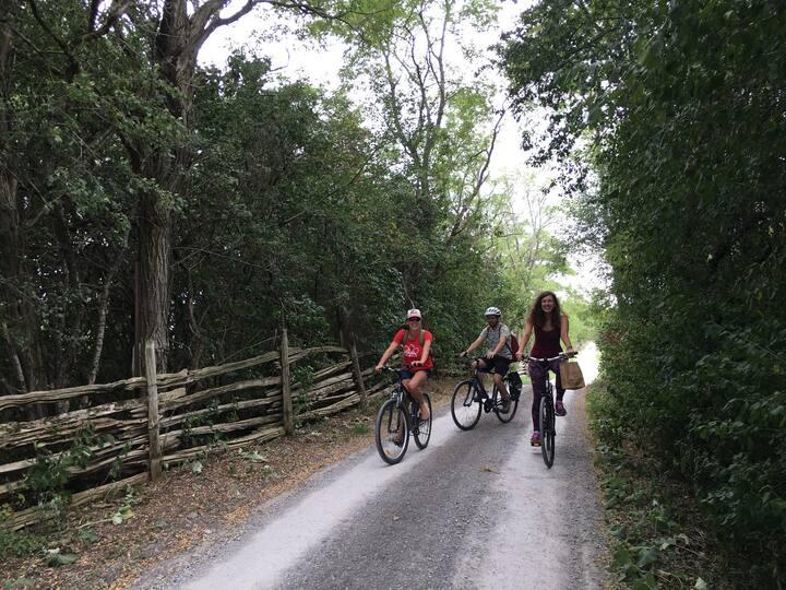 Biking to the winery