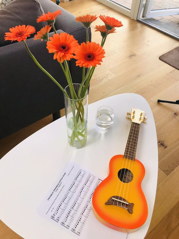 the orange ukulele