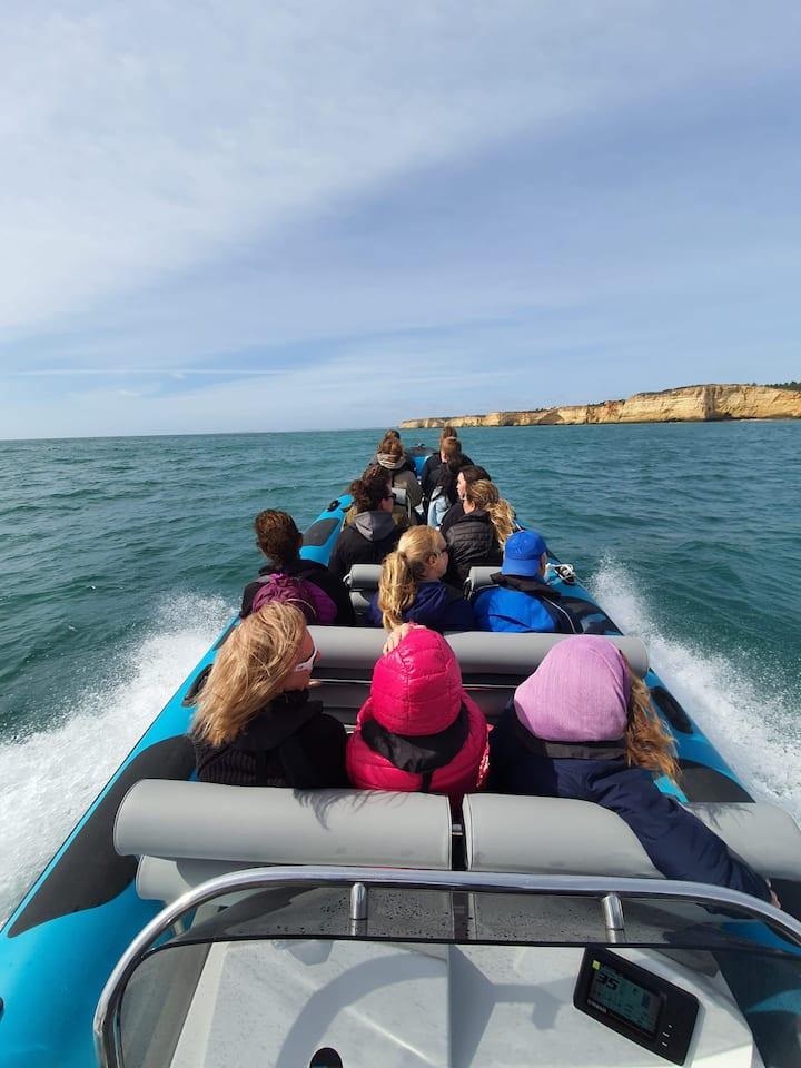 Barcos novos e seguros