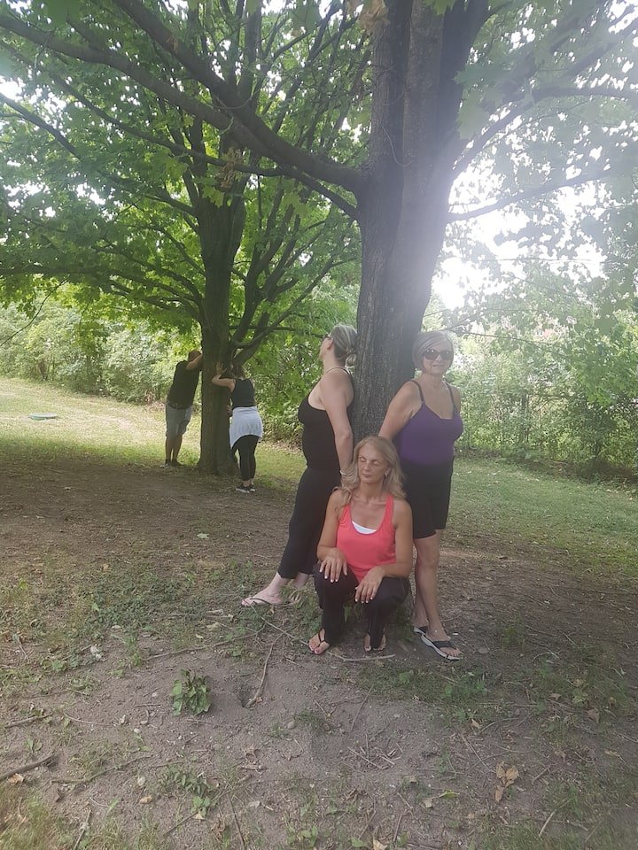 Guided Tree Meditation ( Earthing)