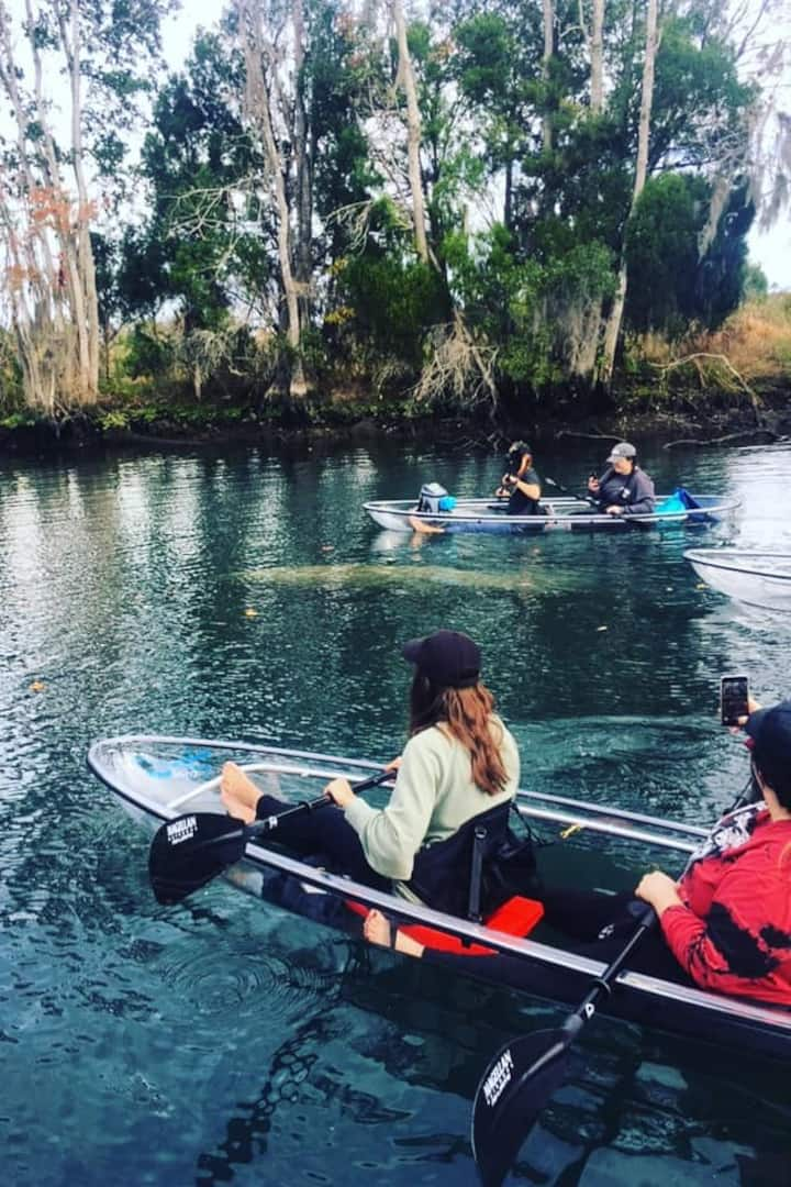 Guests paddling with manatees!