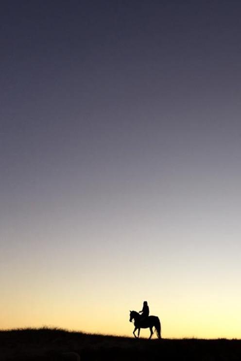 Volledig scherm tonen, door de host verstrekte afbeelding