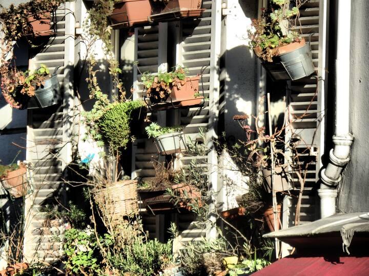 Beautiful balcons of Montmartre