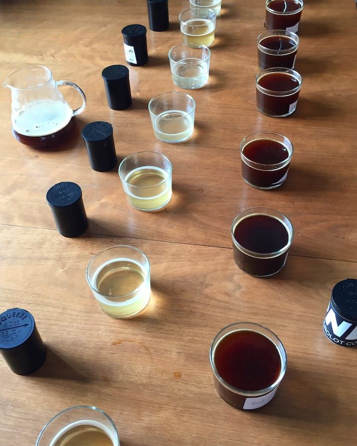 Cupping Experience