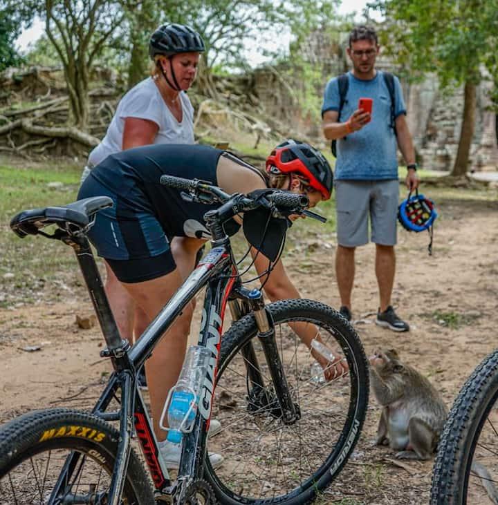 See the exotic wildlife at Angkor park