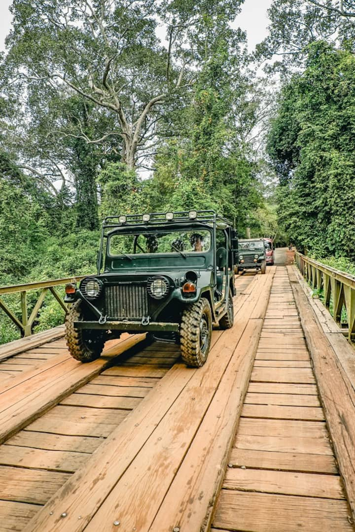 Thread our way through Angkor off roads