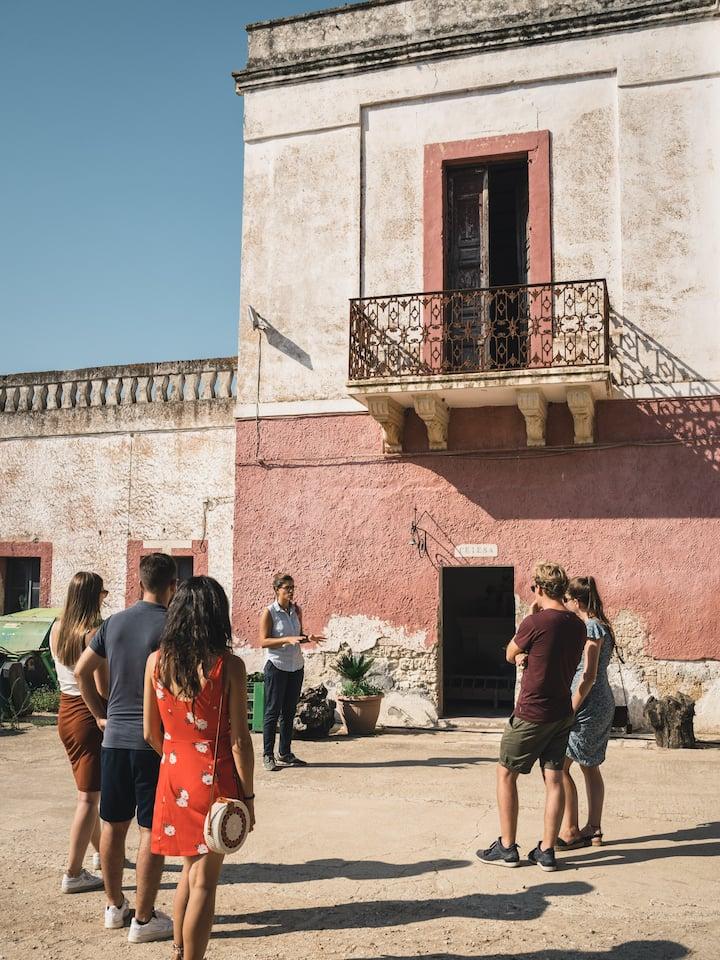 Visit the Masseria