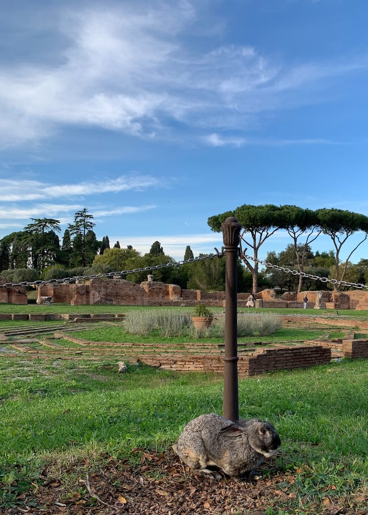 A special guest on the Palatine Hill