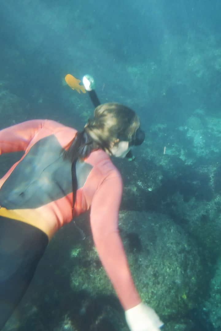 Searching for Garibaldi