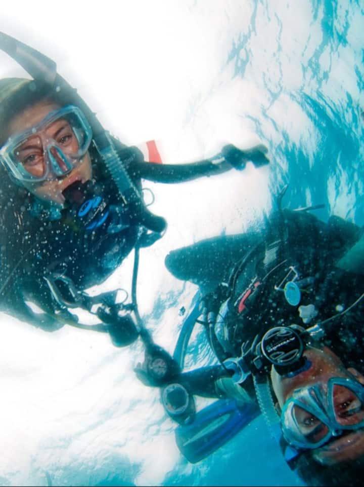 Let's dive!