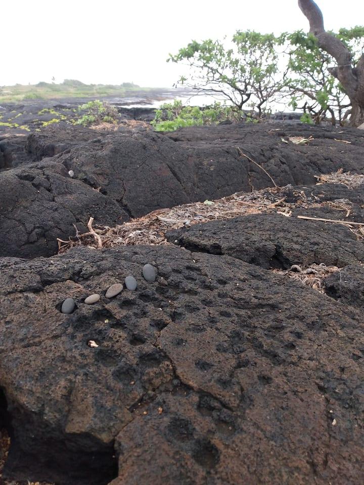 Ancient Hawaiian Checkers. Konane boa