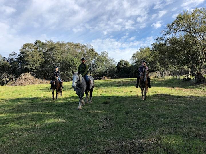 Ride across lush green fields
