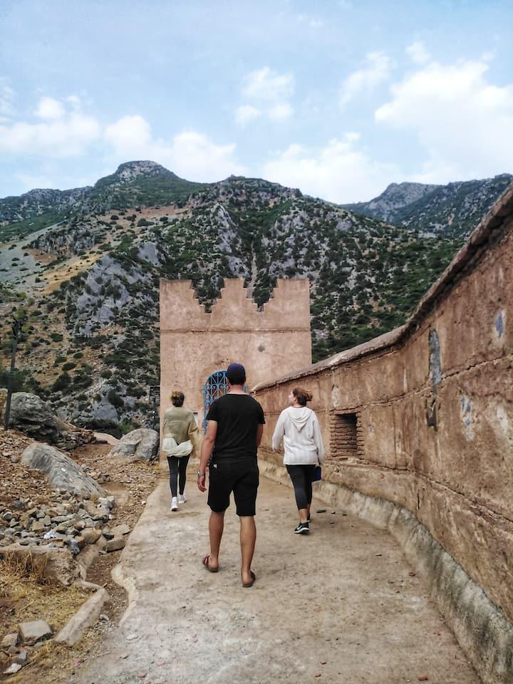 wandering along the wall