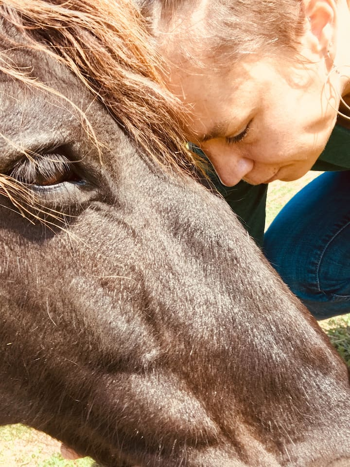 Connecting with the magic of horses