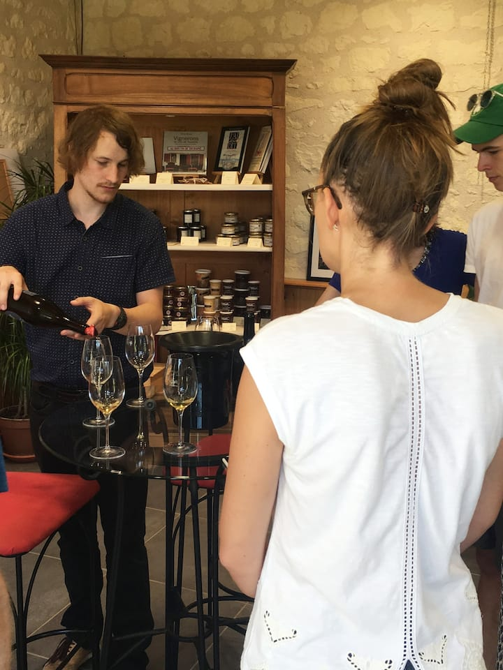 Wine tasting in different Vineyards