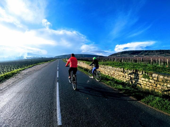 À vélo sur la route des Grands Crus