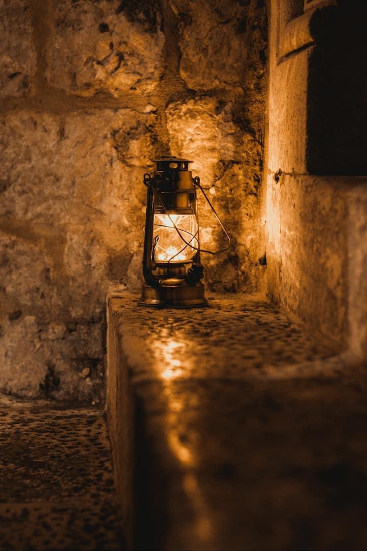 Nocturnal Light...