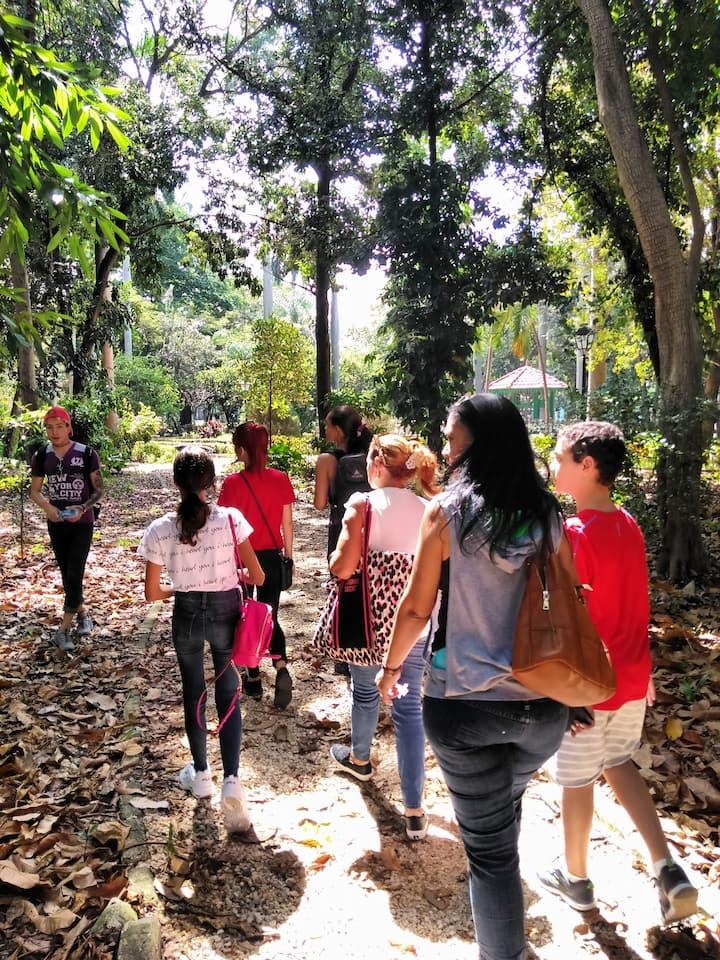 Grupo de visitantes descubriendo el Bosque