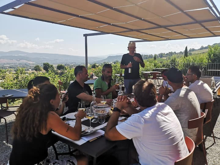 Explications for tasting great wines