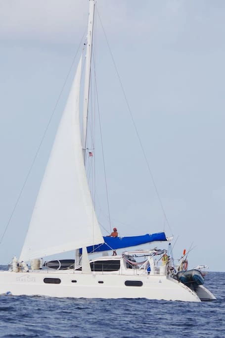 Sails up and using the wind