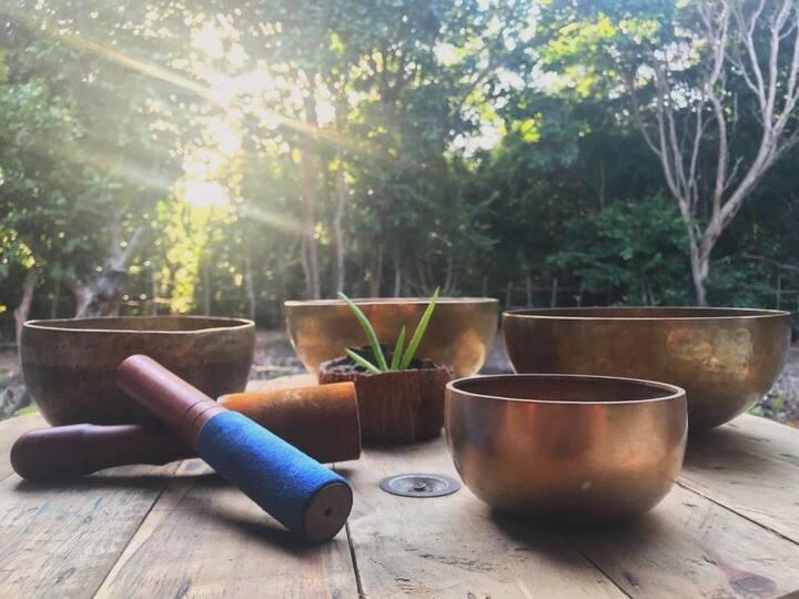 You'll enjoy this Vibroacustic Bowl Set