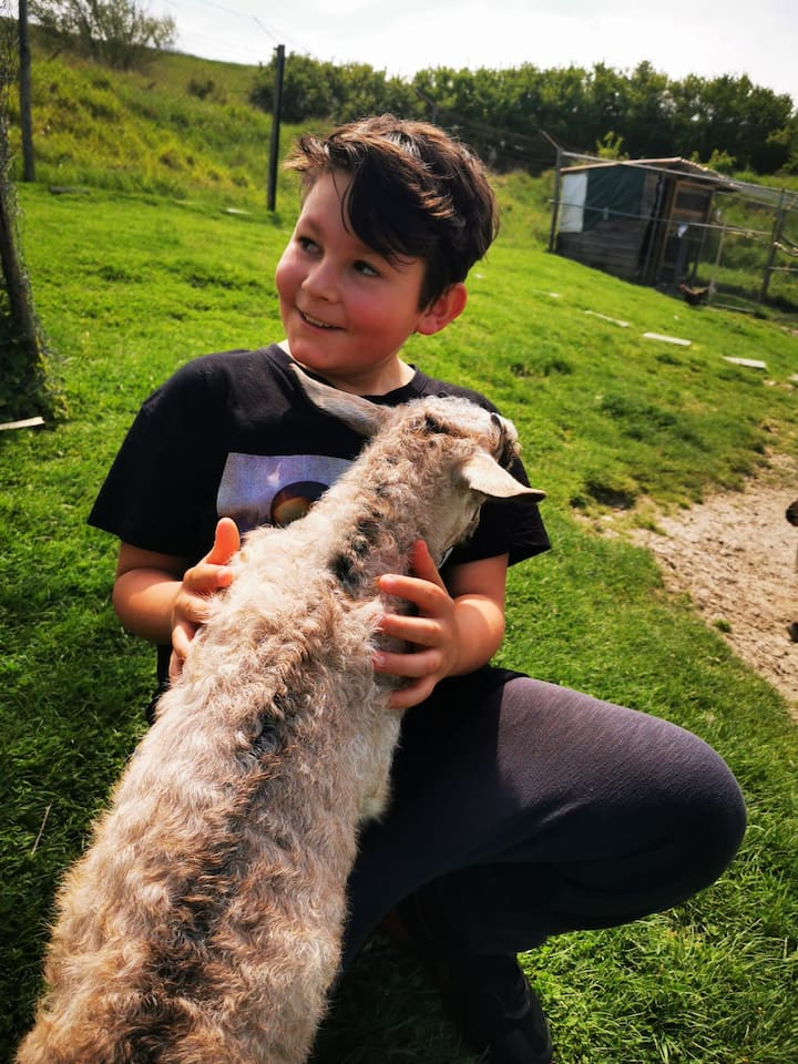 I bambini amano le nostre capre