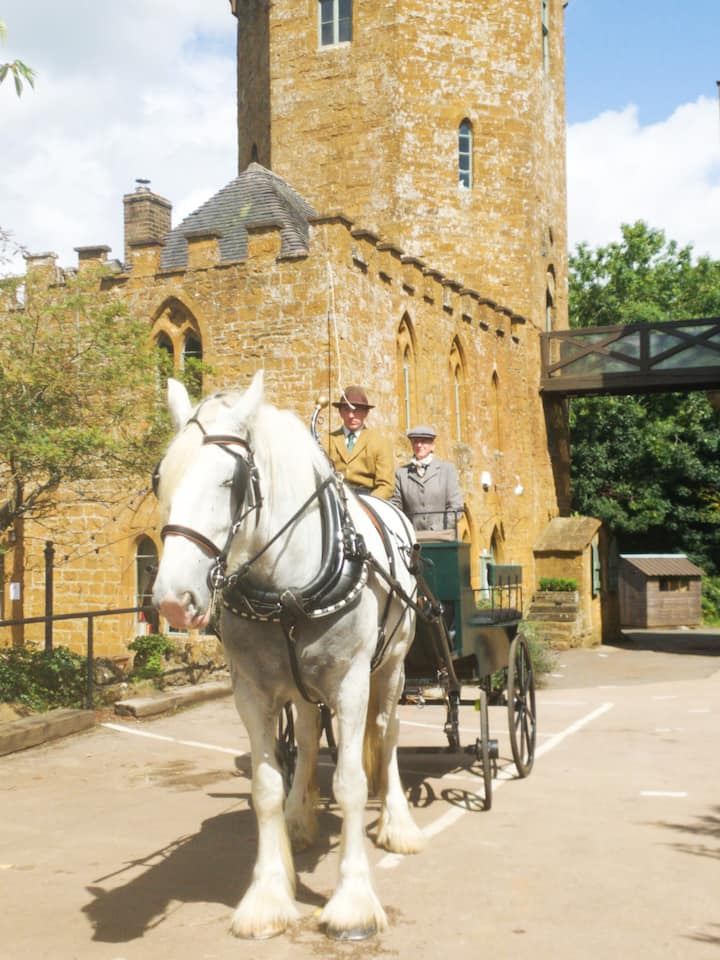 Ride by horse & carriage in style