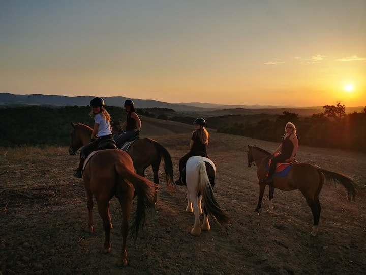 sunset trail rides