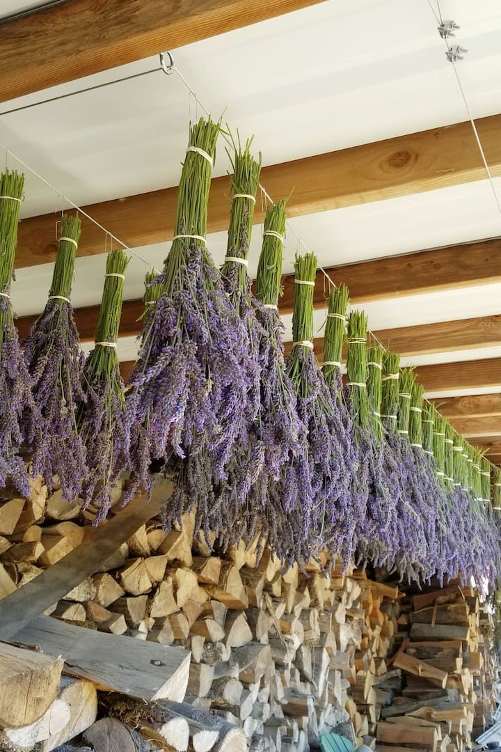 Bouquets drying