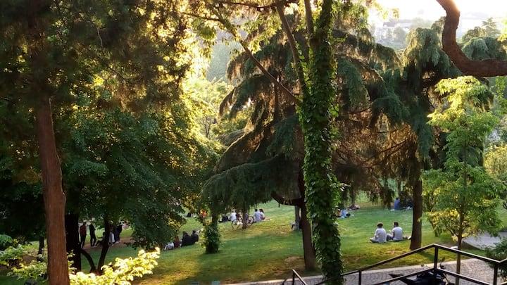 Gorgeous Maçka park, where we'll meditate