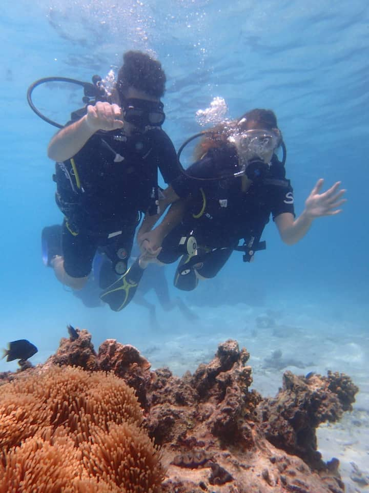 Living coral reefs