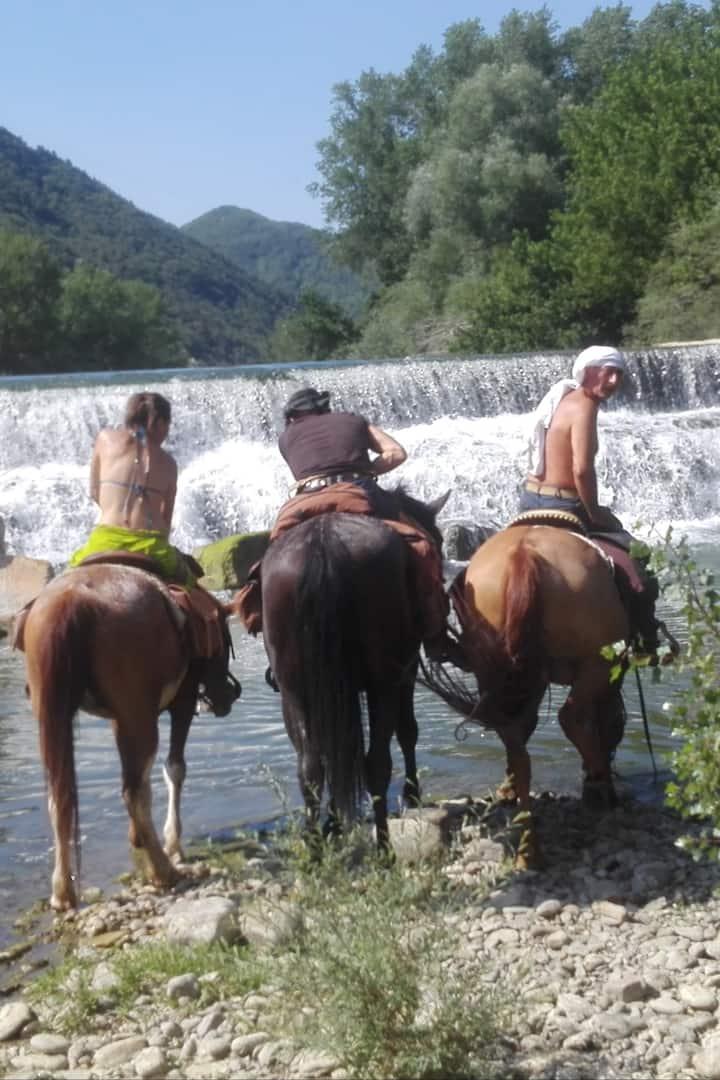 trekking a cavallo con fantastico bagno cascate