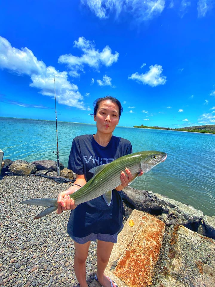 Bonefish in the bay