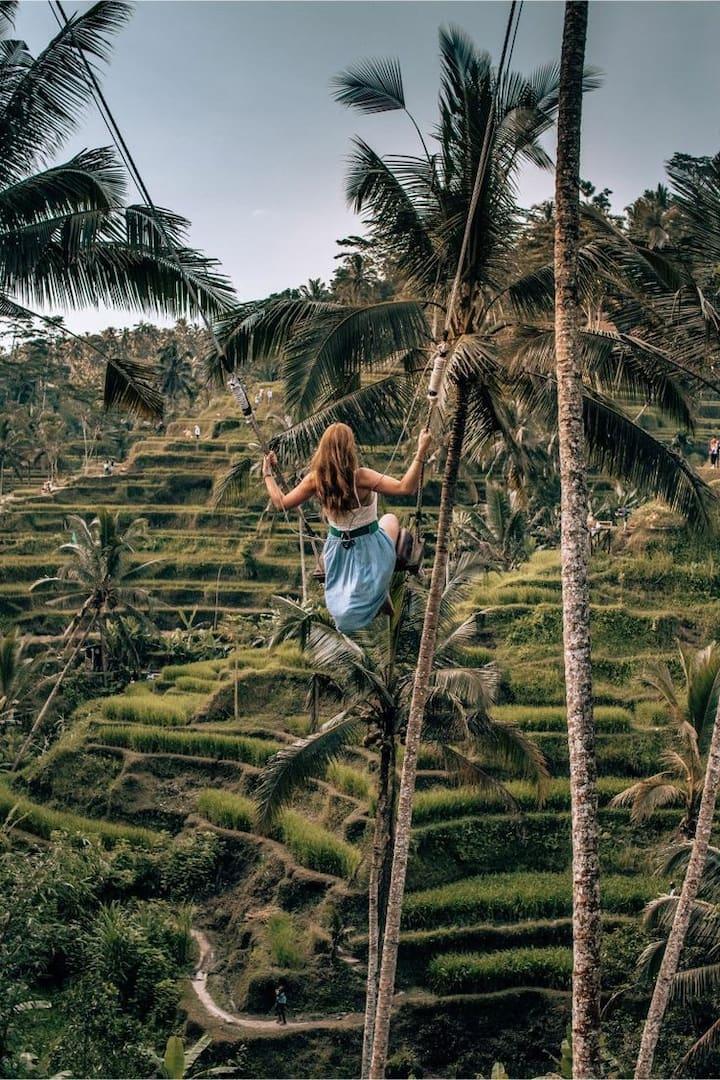 Swing in rice filled few