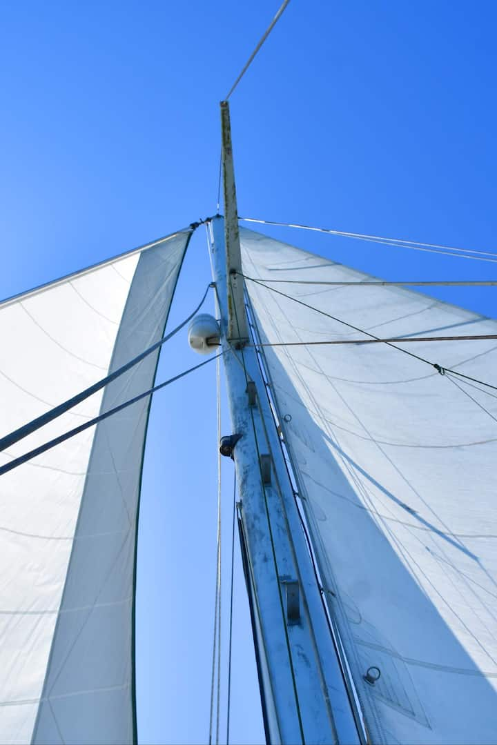 """The classic """"wind in the sails"""""""