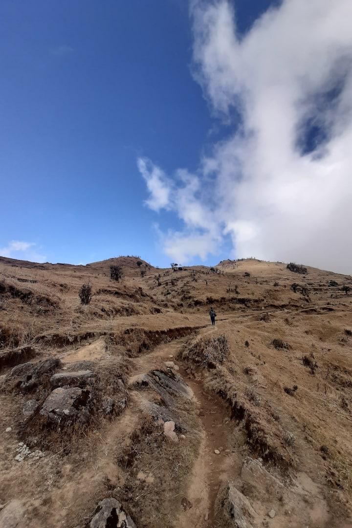 Views on trail