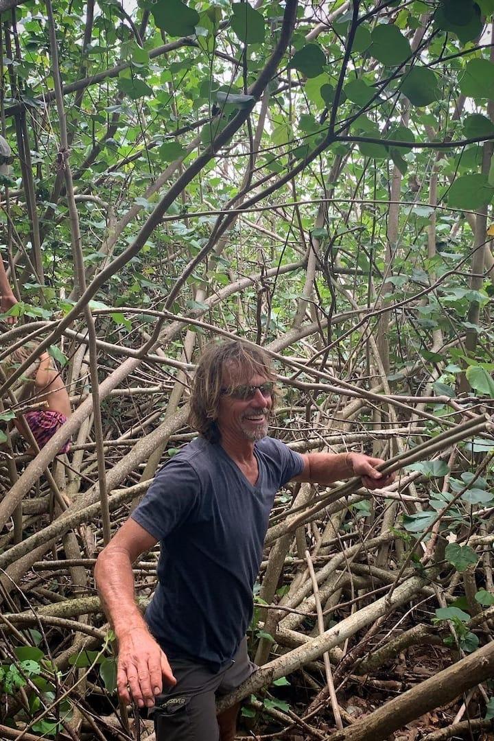 """hiking through """"hau bush"""" forest"""