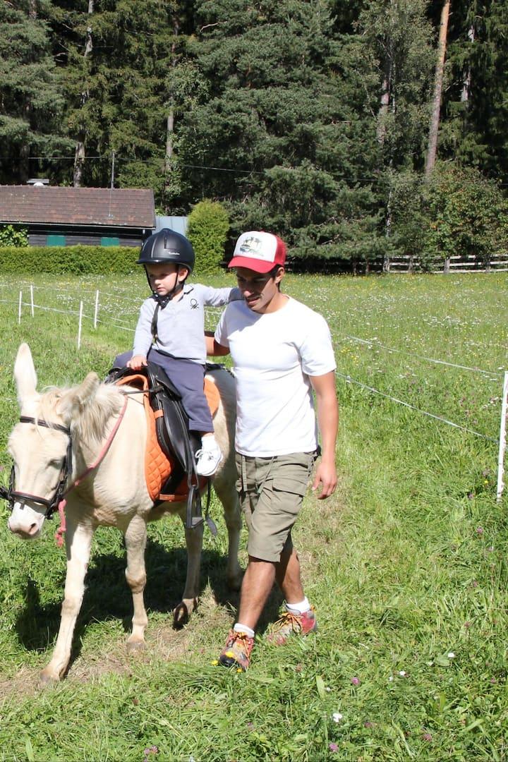 So gehst du mit dem Esel bzw. Pony