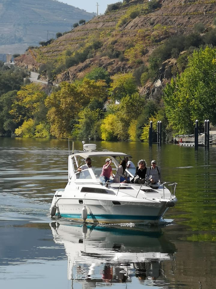 Private boats with guides(wines/snacks)