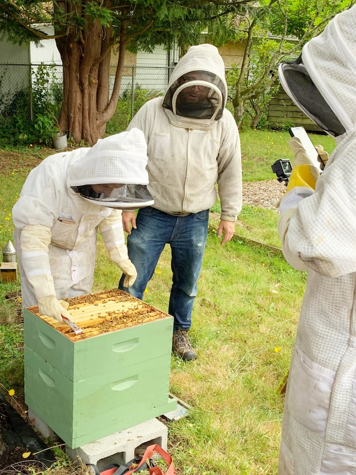 Taking turns in the hive!