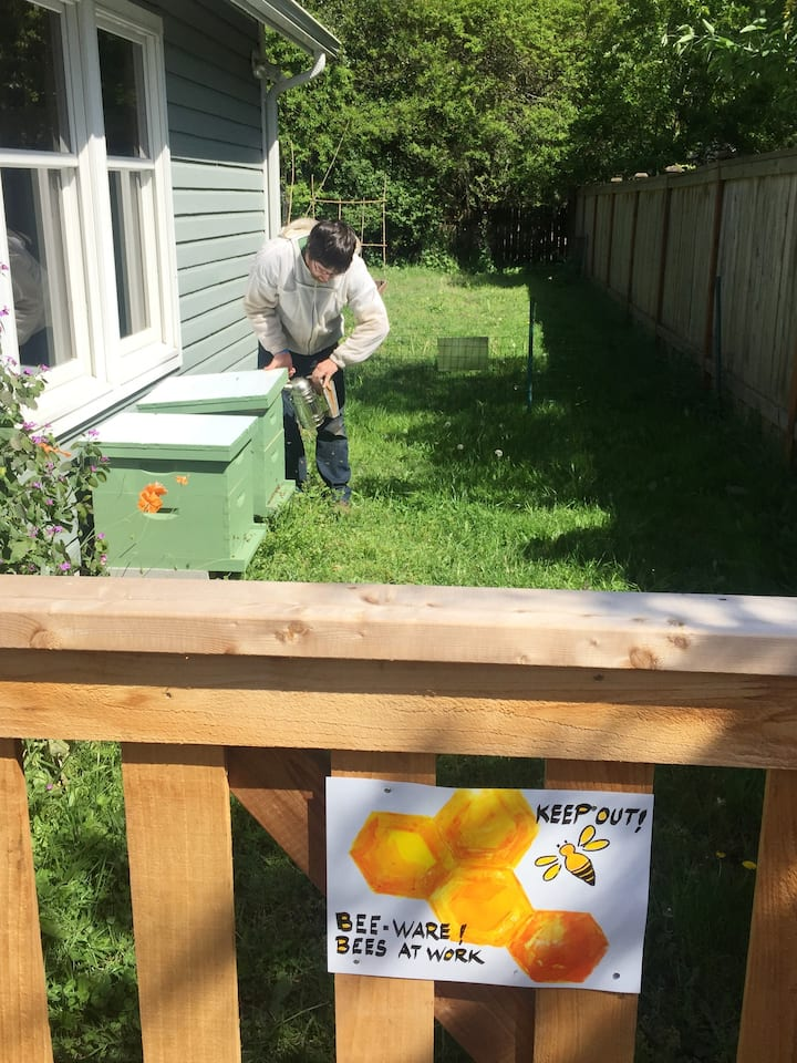 Peter caring for backyard hives.