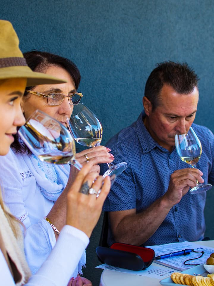 Learn How To Analyse Wine