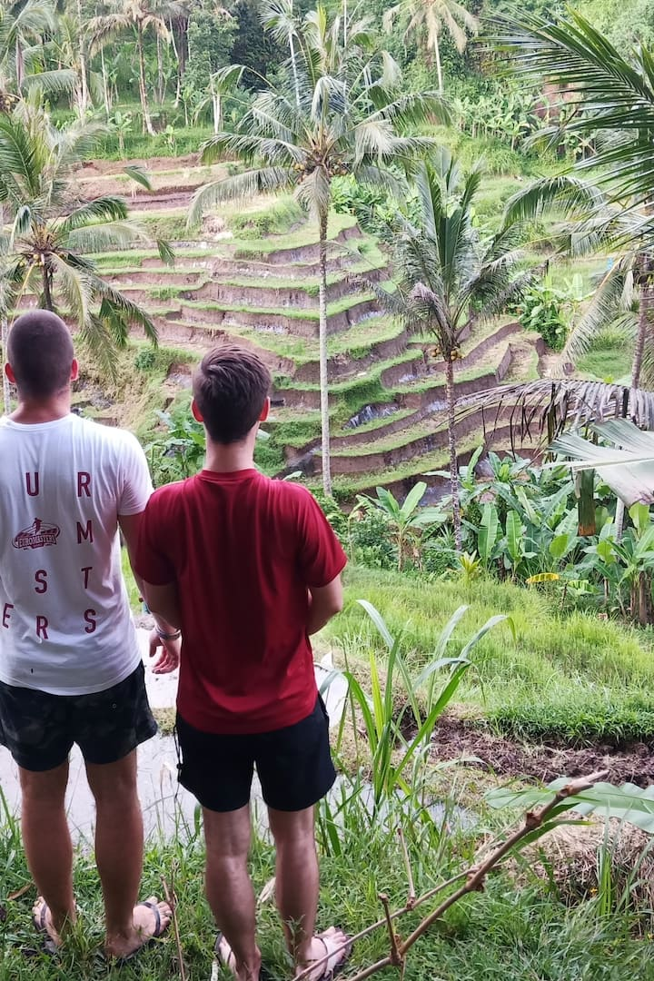 Hidran rice terrace