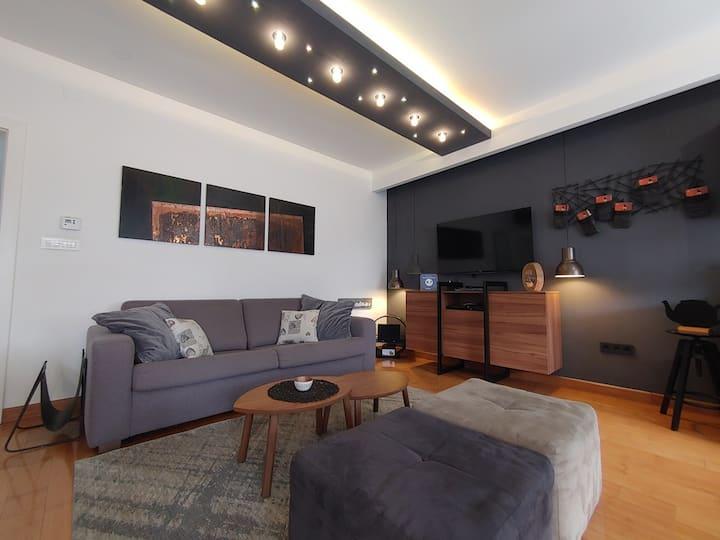 Luxury 2 bedroom apt, 6 guests