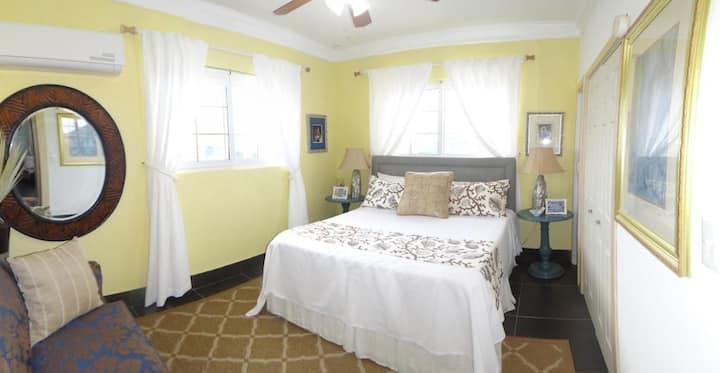 Amazing 1bedroom KingBeachfront villa