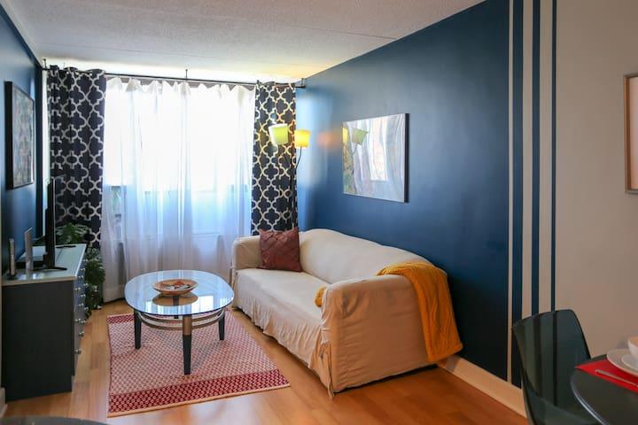 """Downtown """"Blue Nest"""" apartment"""
