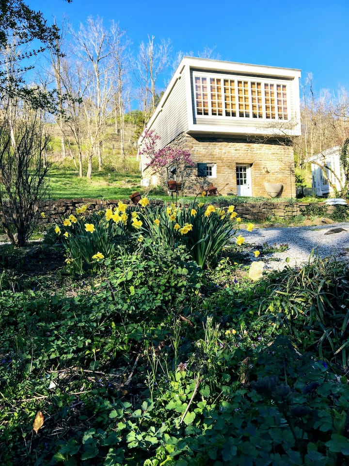 Guest House Monte Cassino Vineyards